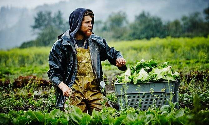 organic_farmer