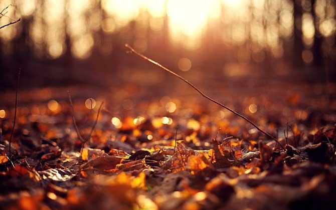 autumn_october